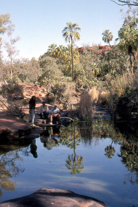 Palm Valley CDT86001-2