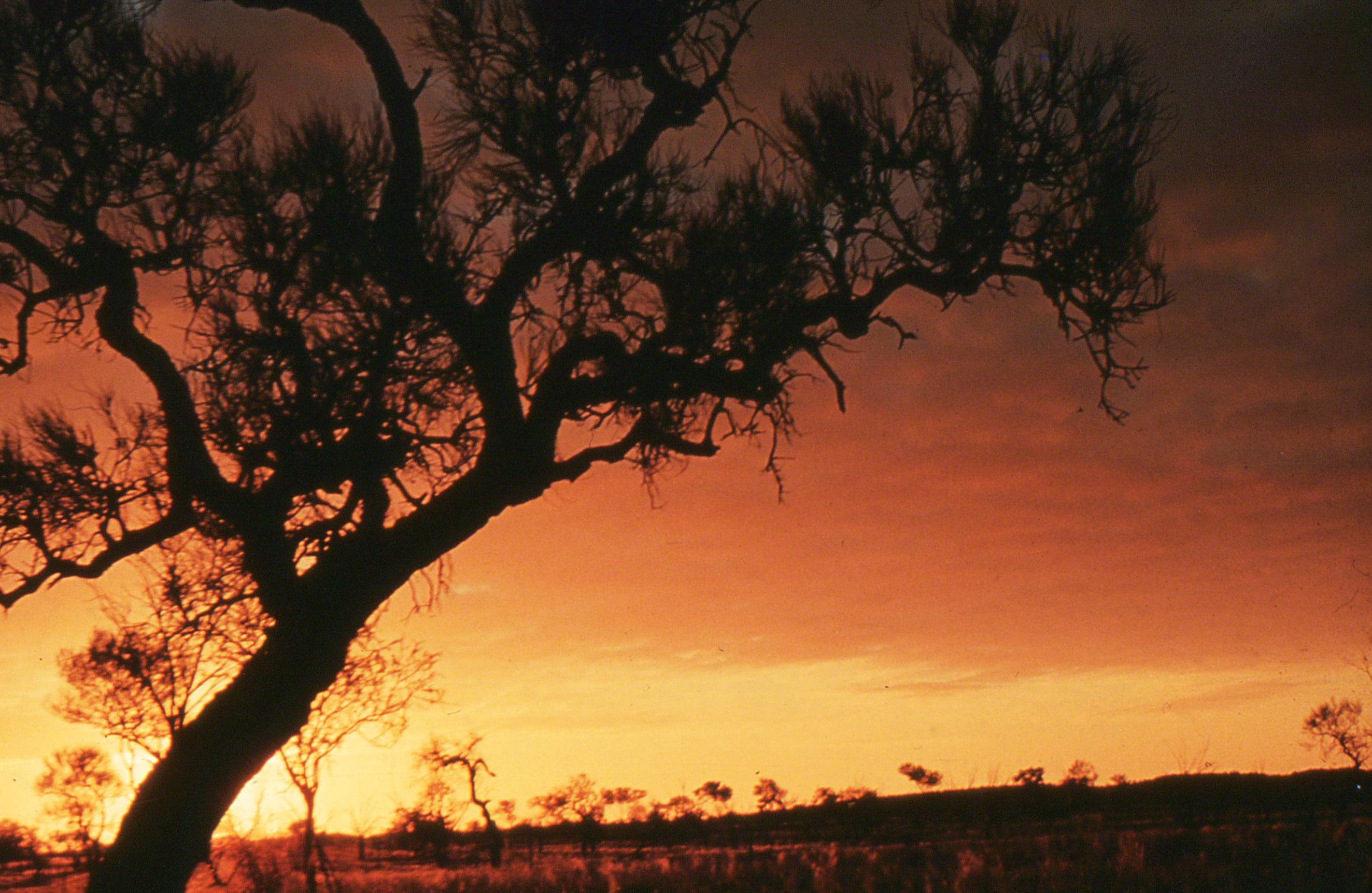Sams032-sunset