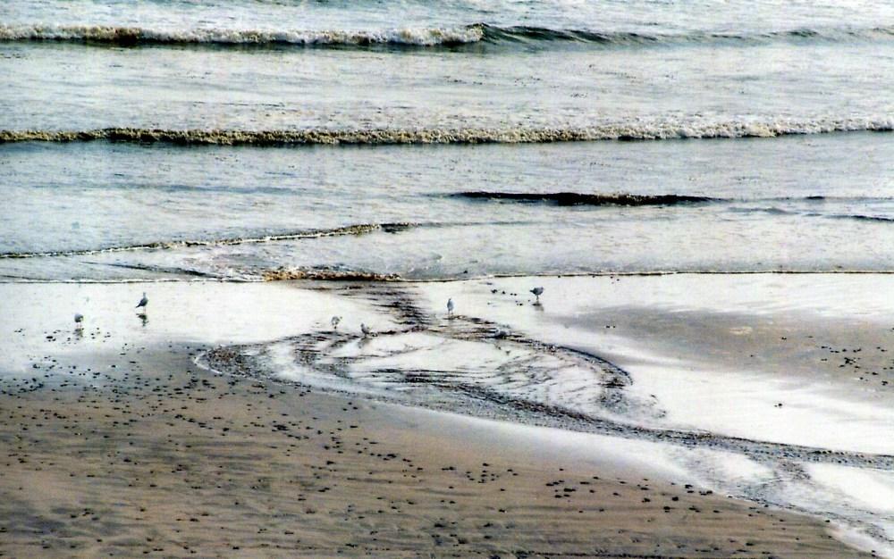 tas2011001-Ocean Beach